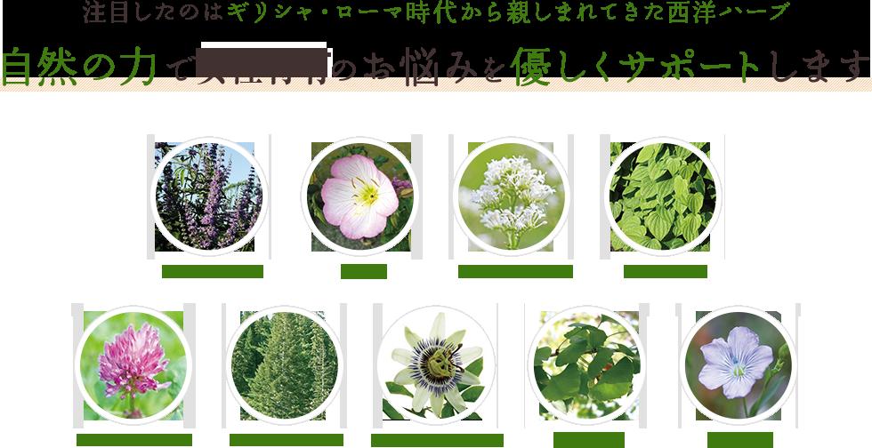 main-image-33b