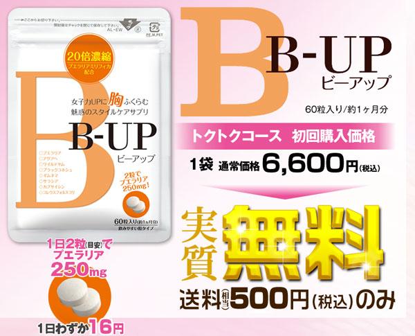 B-UP ビーアップ サプリ