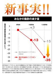 スリムフォー 体脂肪率の表